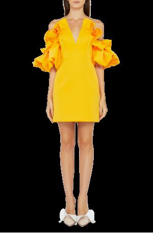Hitching Dress